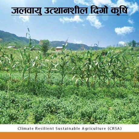 Climate Resilient Sustainable Agriculture