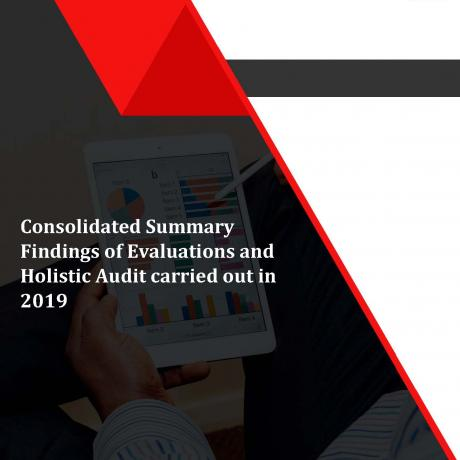 Consolidated Summary Findings of Evaluations and Holistic Audit carried out in 2019